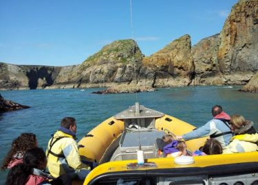 Sunny Ramsey Island Venture Jet boat trip