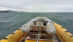 Venture Jet boat heading to Porthgain harbour
