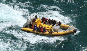 Ocean Dynamics Ribworker jet boat for sale